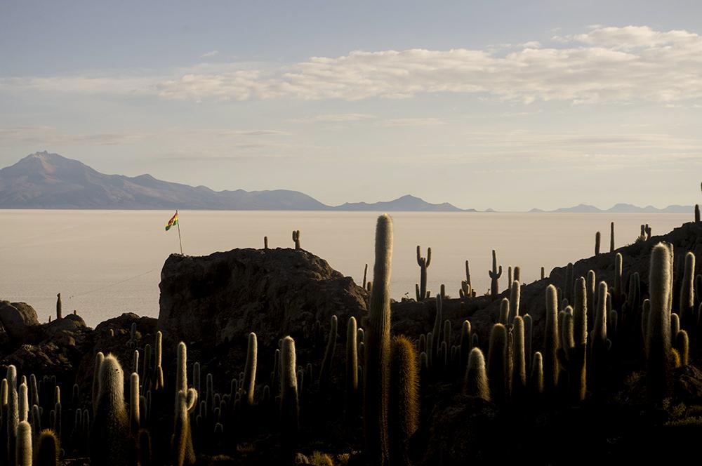 Cacti & Flag, Salar de Uyuni, Bolivia, 2015