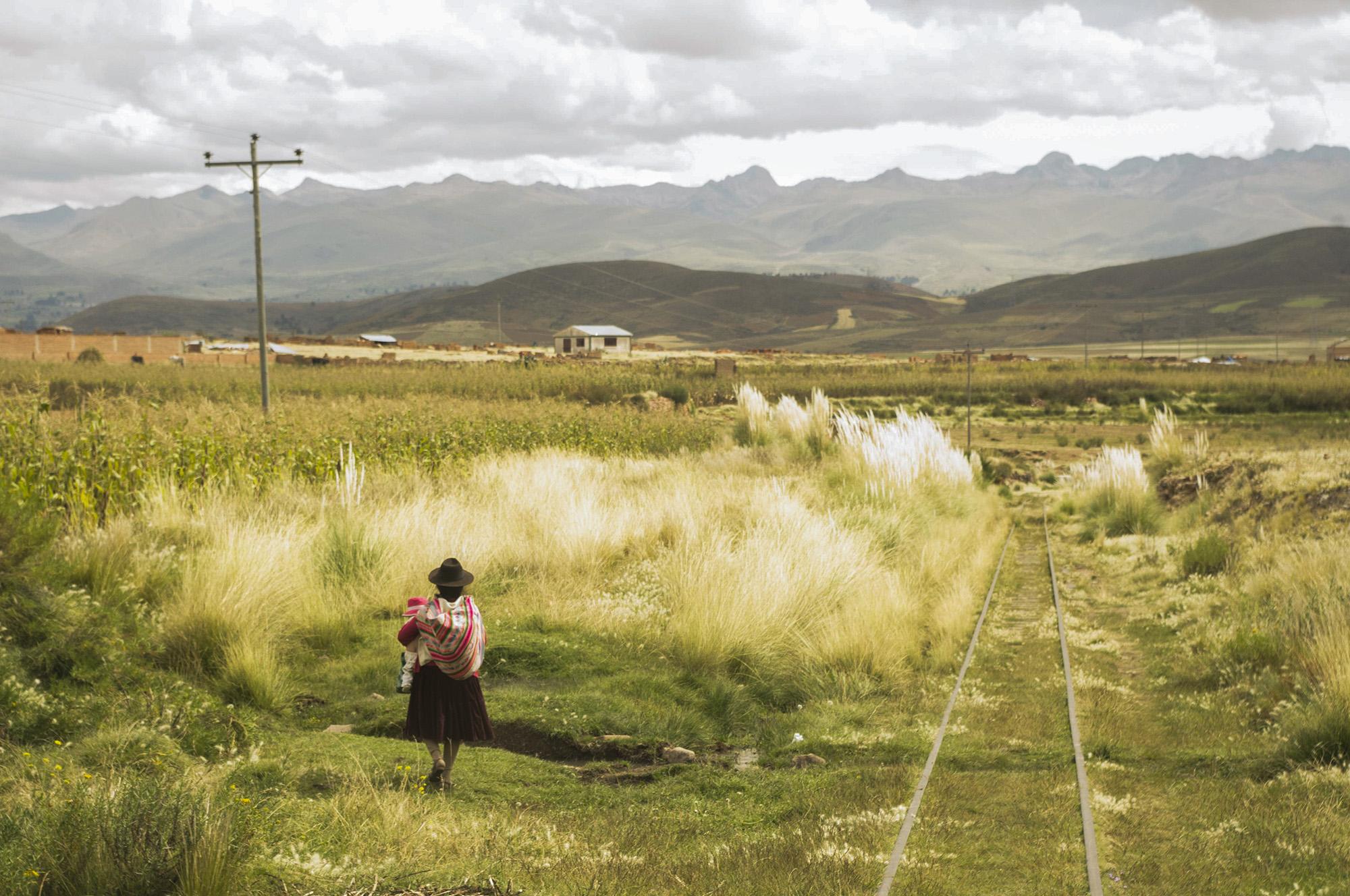 Bolivian Landscapes 4