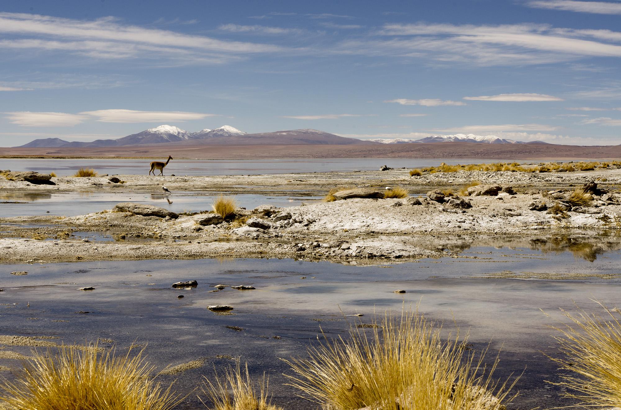Bolivian Landscapes 6